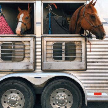 Horsebox Finance